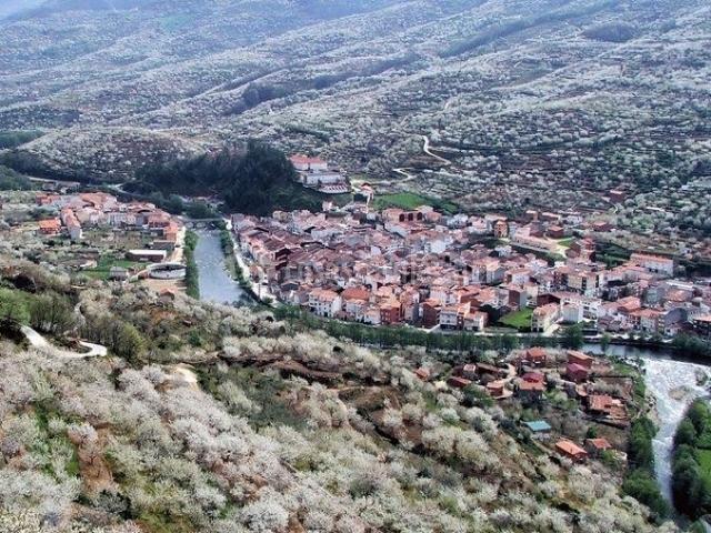 Zona de Navaconcejo alrededor del río