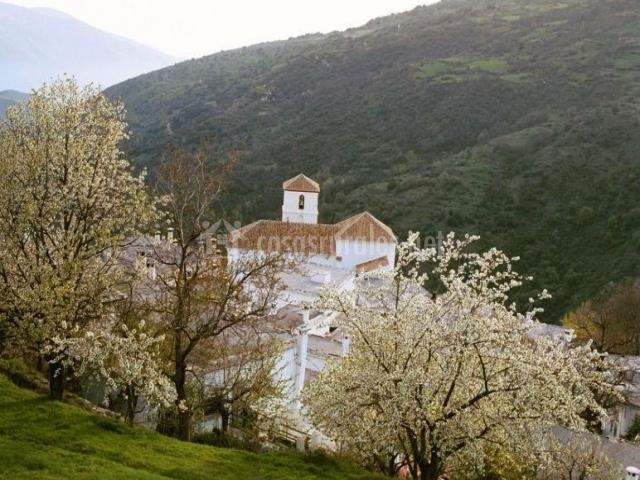 Zona de la iglesia de Bubión