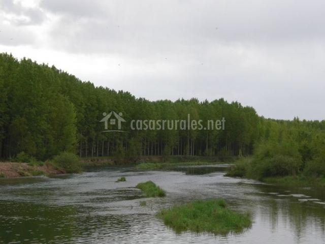 Zona natural en el entorno