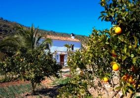 Casa Rural Rancho Calvillo