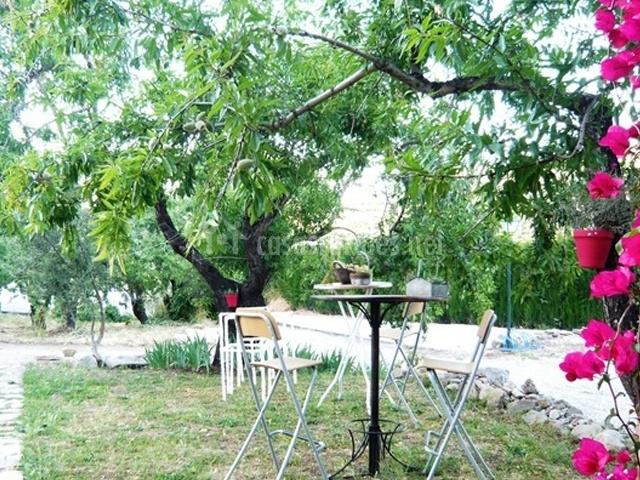 Jardines con árboles