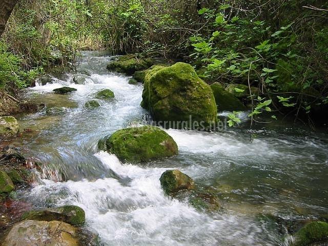 Parque Natural de la Sierra de Grazalema