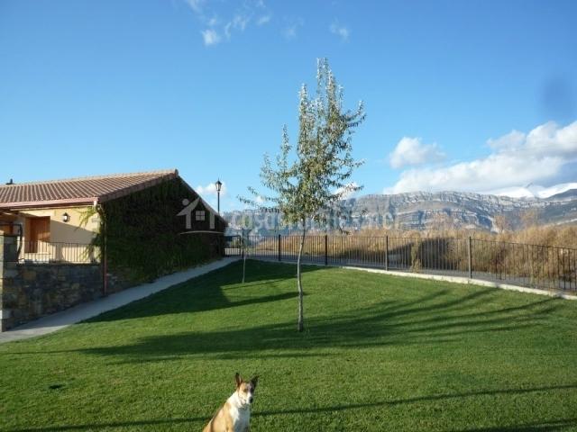 Jardin con el pico Cotiella nevado