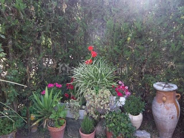 Vistas de los jardines decorados con tinajas