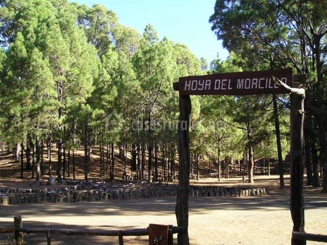 Zona de recreo Hoya del Morcillo