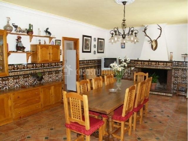 Salón-comedor con mesa para 8 personas