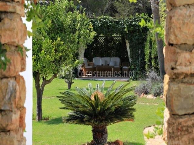 Patio exterior con varias plantas
