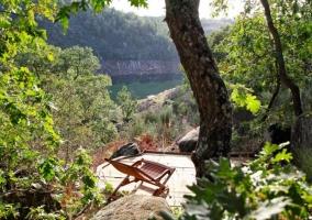 Cabaña Musgo- Dormir en los Árboles