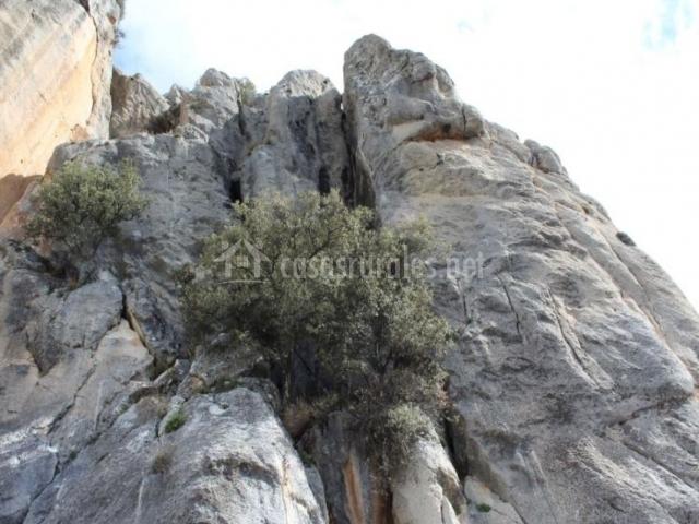 Zona natural para hacer escalada