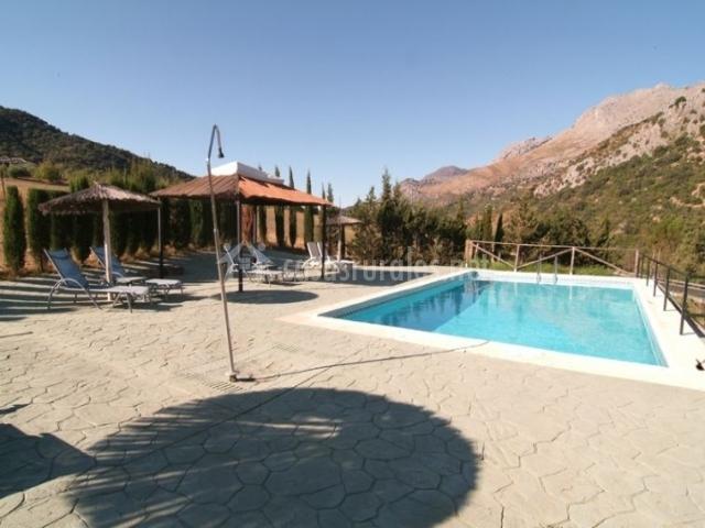 Vistas de la piscina con duchas y hamacas
