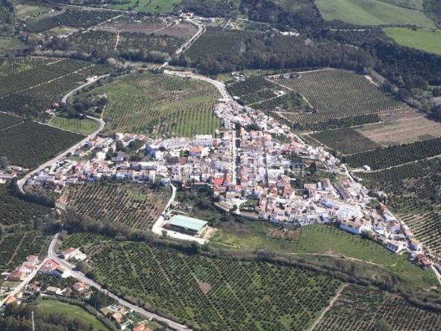 Zona centro vista desde el aire