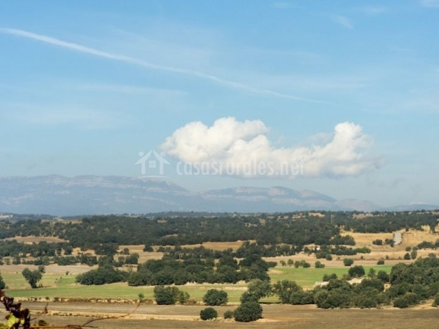 Zona natural del entorno con sus campos