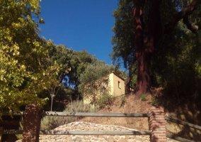 Casas Rurales El viejo alcornoque