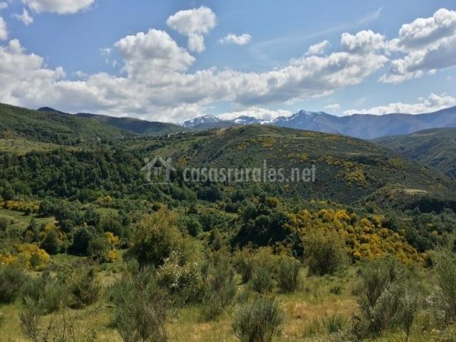 Zona natural vista desde las minas