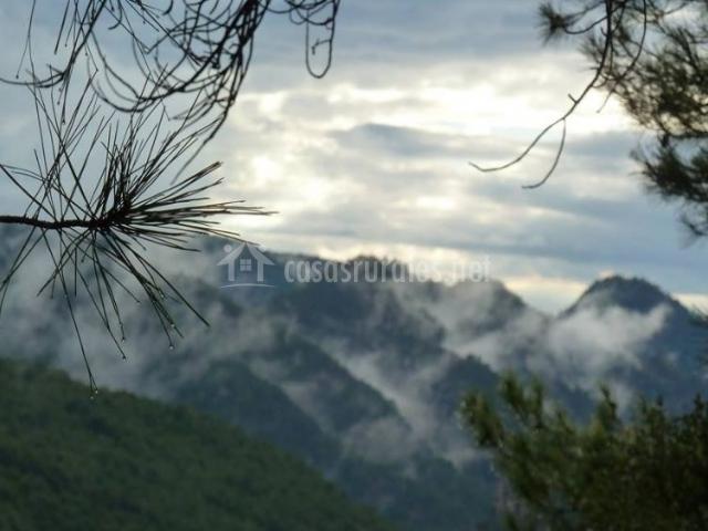 Zona natural de la sierra de los Barrancos