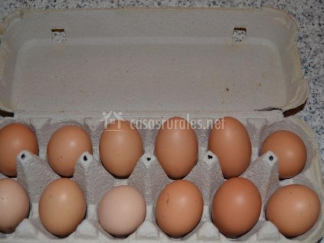 Obsequio de huevos