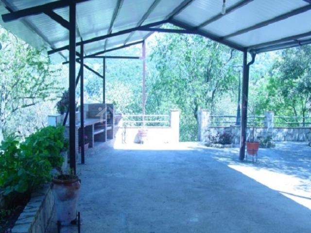 Terraza y entrada