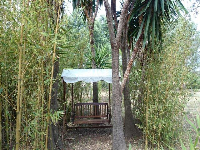 vegetación exterior