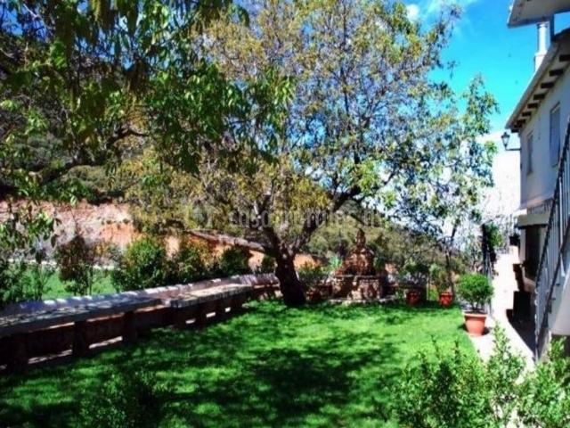 Vistas de las zonas verdes con plantas y la fachada