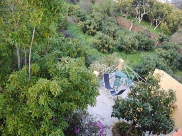 Vistas de la terraza con mesas y sillas rodeadas de zonas verdes