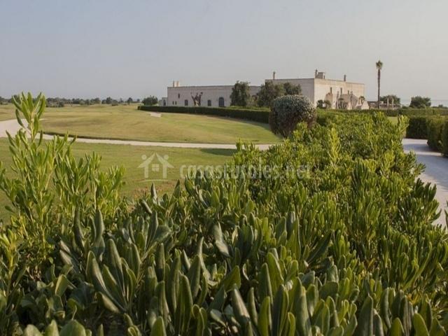 Alrededores del campo de golf