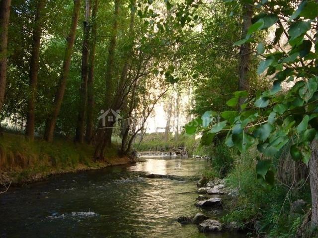 Río Gaudalaviar