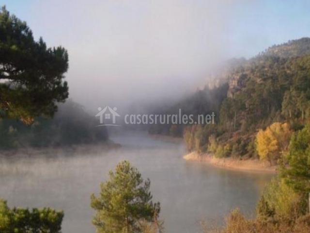 Zona natural con bosques al lado