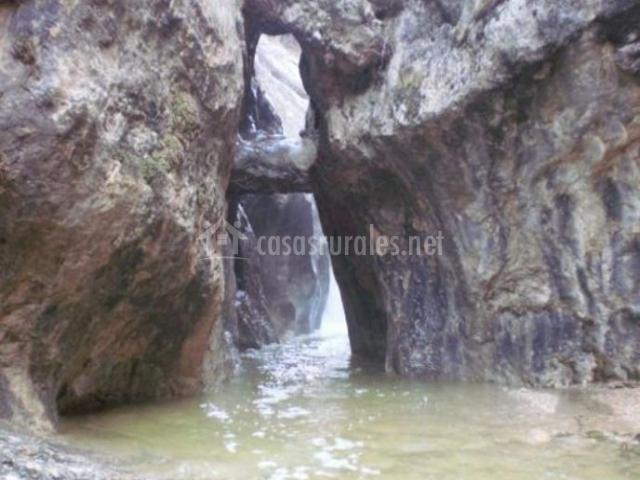 Zona natural con paso de agua