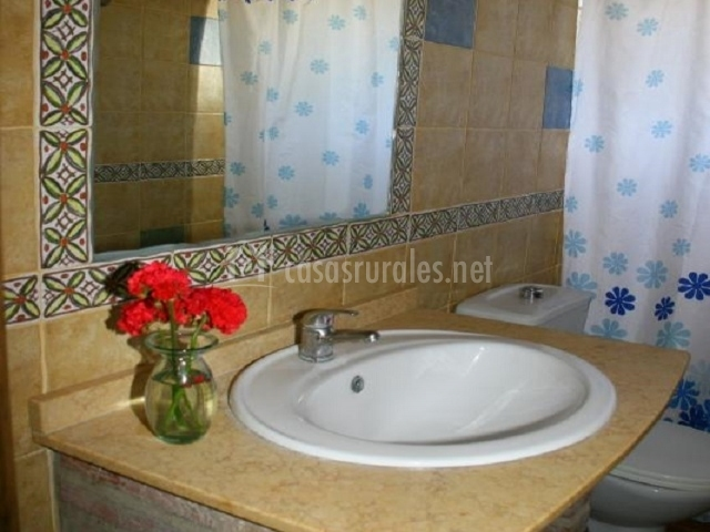 Aseo con estructura de ladrillo en el lavabo y ducha