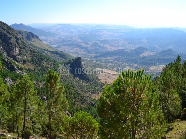 Vista del Parque Natural de Sierra de Grazalema