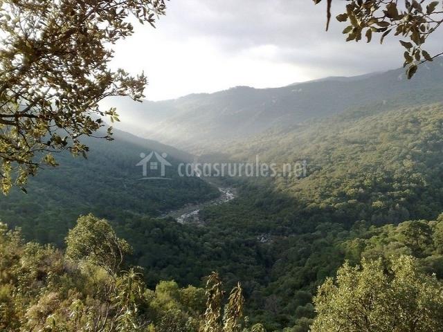 Vista general del Parque Natural de los Alcornocales