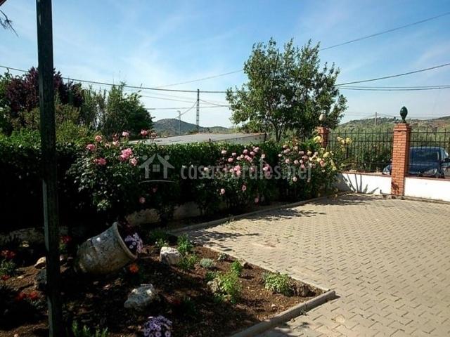 Vistas del patio con flores