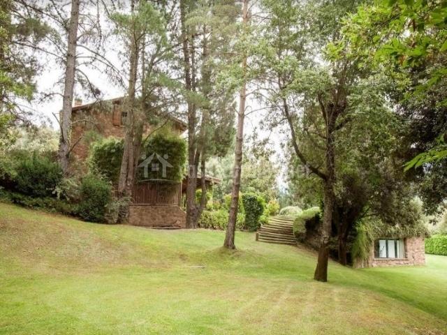 Vistas de los exteriores con pinos