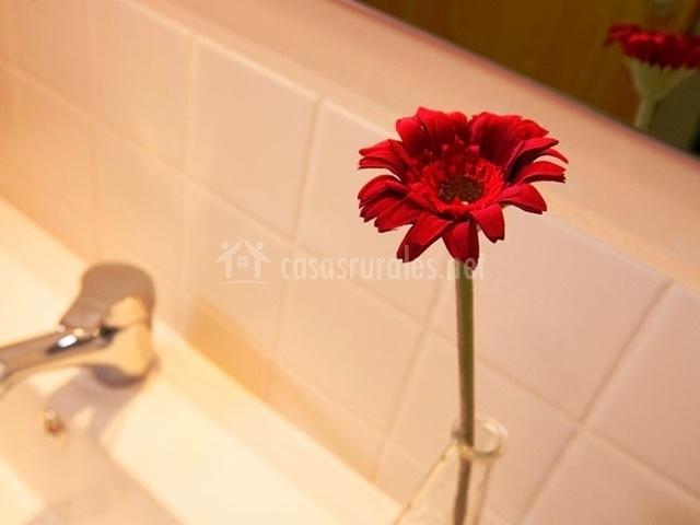 Adorno del cuarto de baño