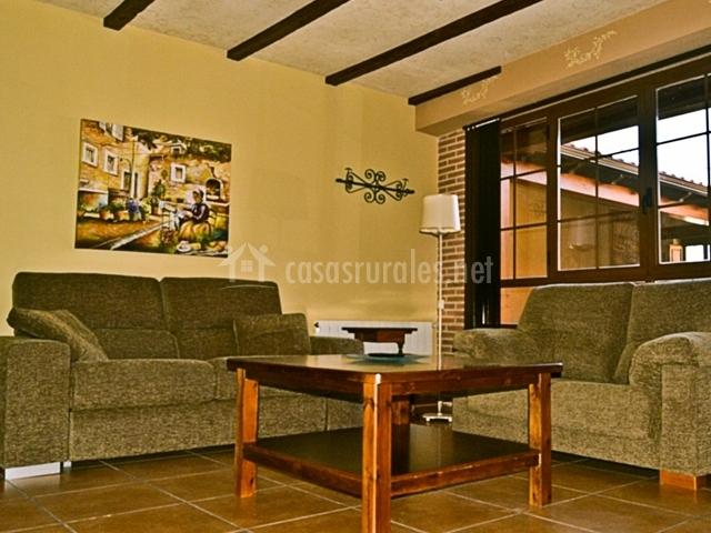 Salón con sofás marrones