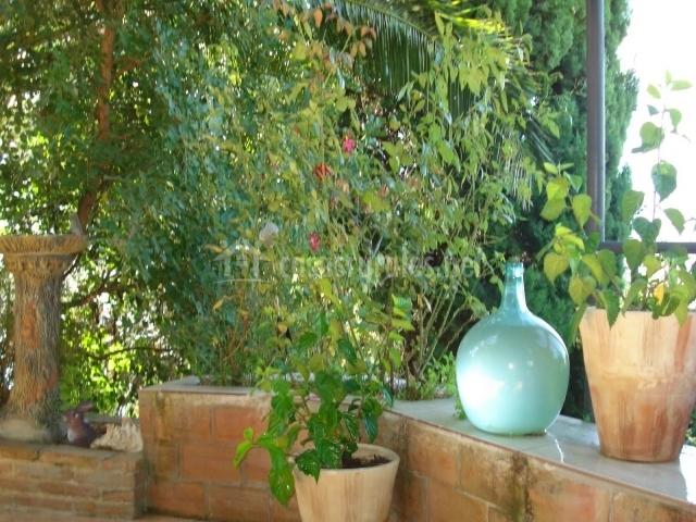 Vegetación y decoración exterior