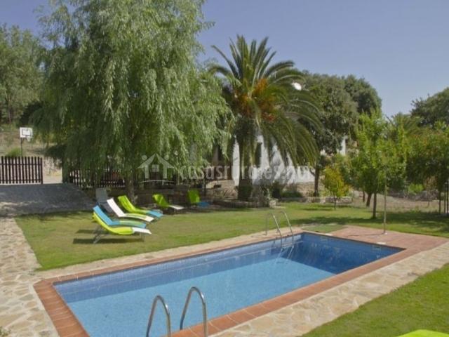 Vistas de los exteriores con hamacas rodeando la piscina