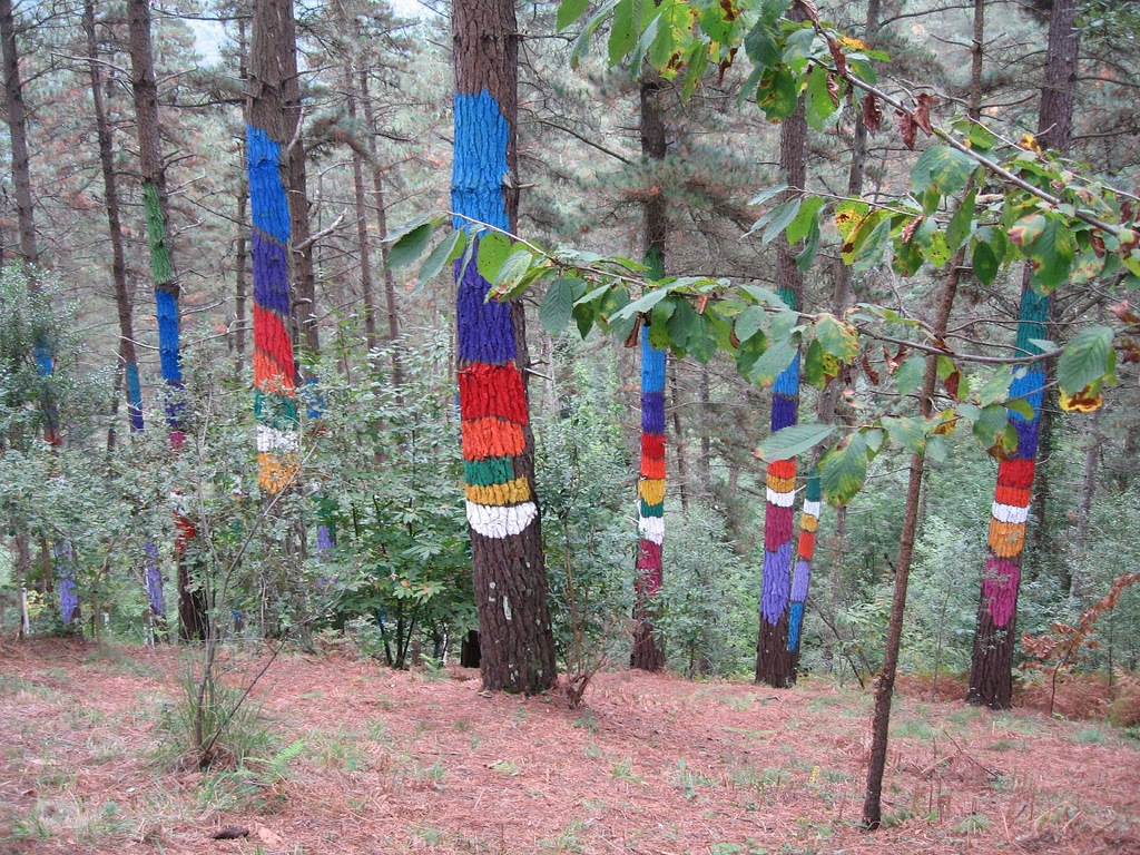 Bosque Animado