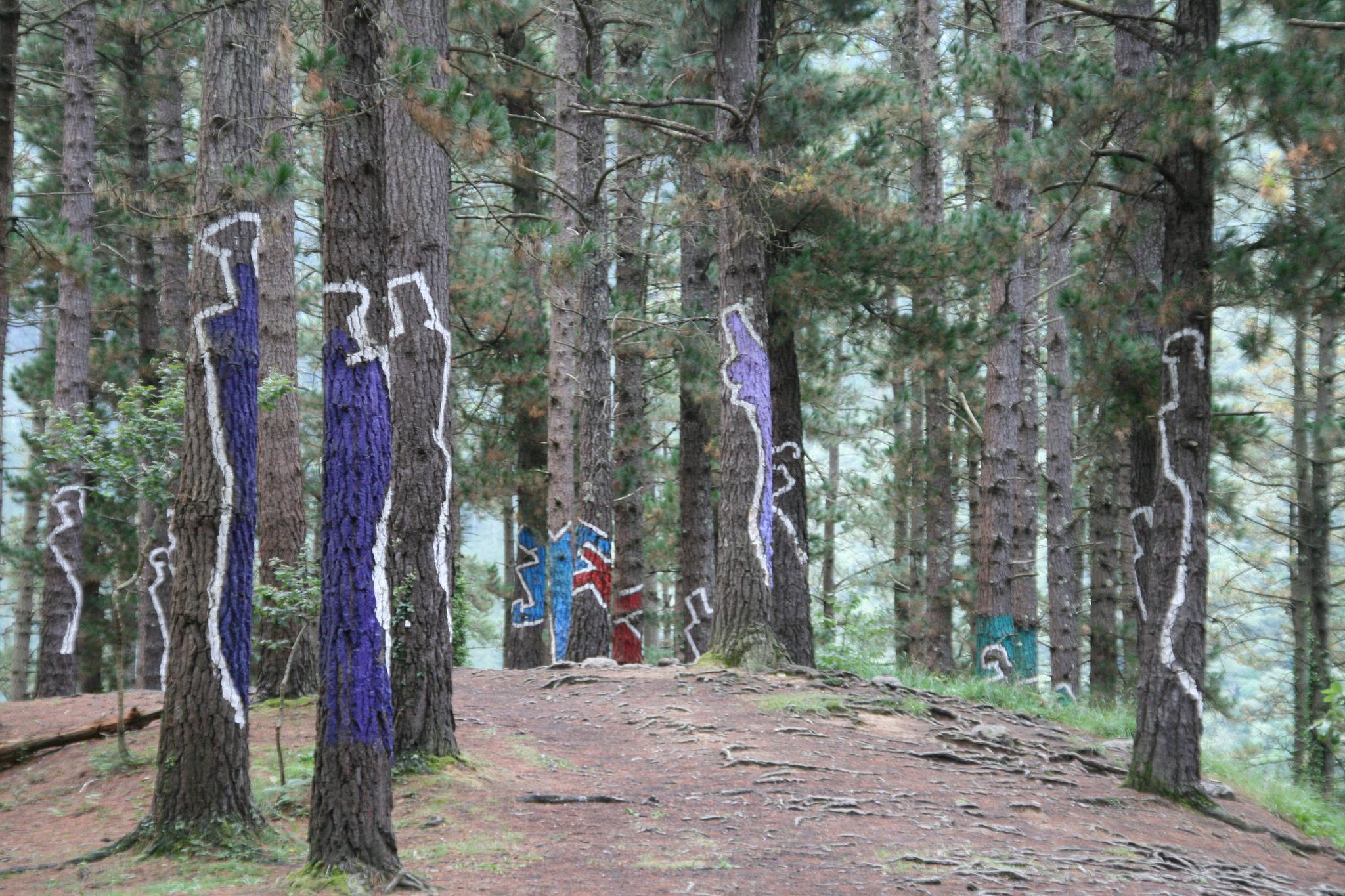Siluetas bosque de Oma