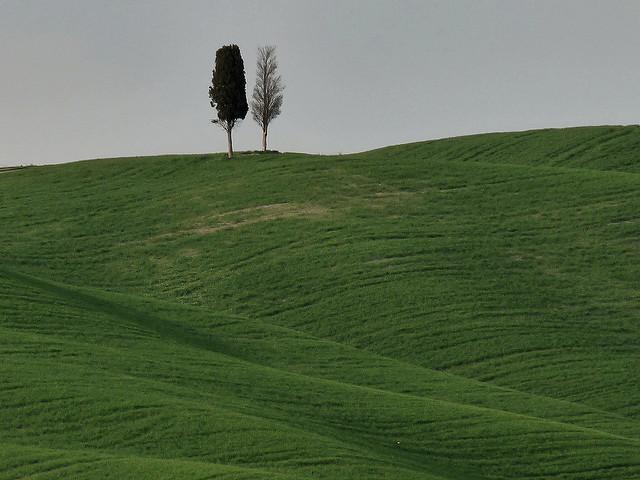 lo.tangelini-FLICKR