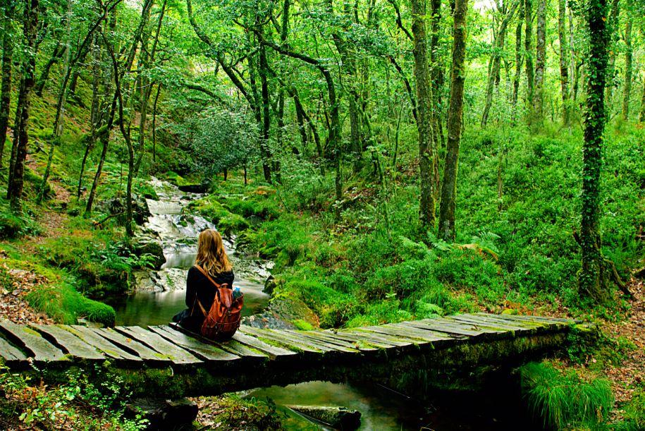 Ruta del Silencio-Turismo y Cultura Asturias