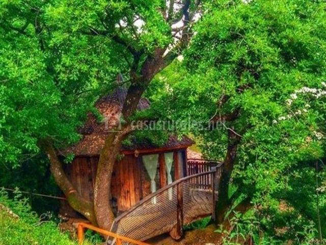 Cabaña en el Árbol-Casasrurales.net