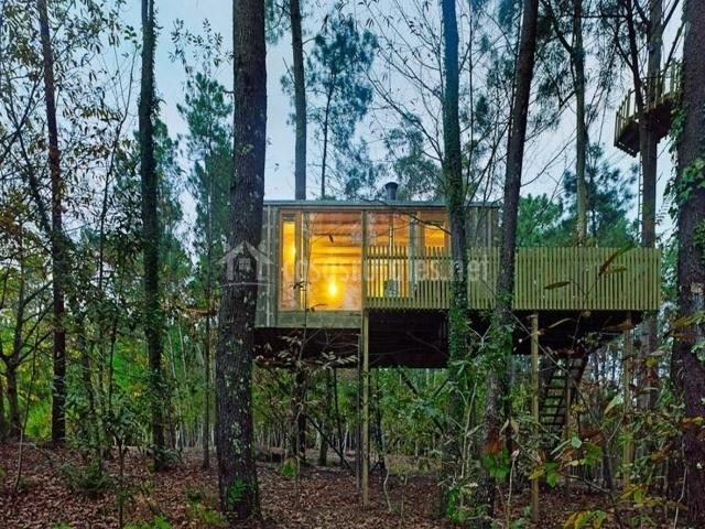 Cabañitas del Bosque-Casasrurales.net