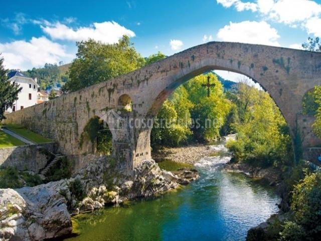 Zona del puente