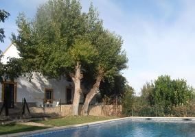 Piscina con zona de árboles y césped