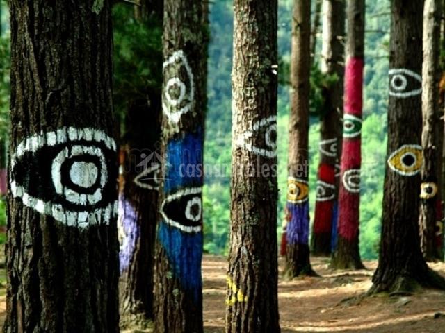 Bosque mágico de oma