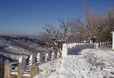 Cortijo Balzaín Casas Rurales - La Zubia, Granada