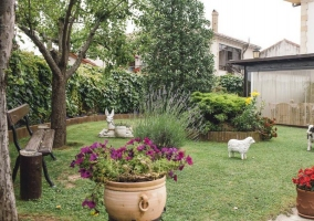 Jardín del exterior