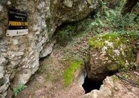 Cuevas del Sidrón
