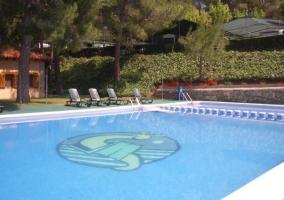 Zona de piscinas y solarium con tumbonas